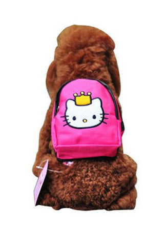 Cat Backpack with Leash