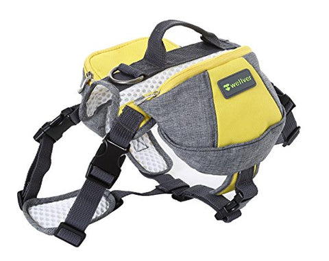Wellver Pet Backpack
