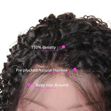 Kinky Curly 360 Lace Frontal Human Hair Wig Pre Plucked With Baby Hair
