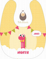 Monthly Bib Set 2 Bibs