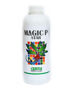 Ingrasamant foliar Magic P Star-Ingrasamant-FamousRoses.eu
