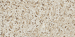 Atlas Marvel Gem Terrazzo Mix Warm