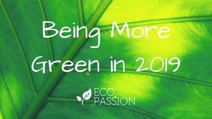 Being More Green in 2019