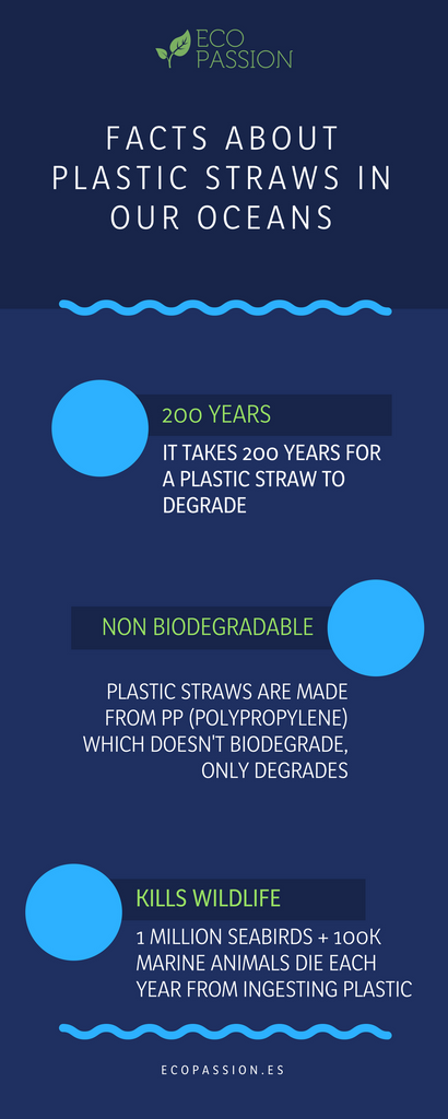Facts about plastic in our oceans
