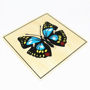 Entomology Puzzles