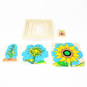 Montessori Sunflower Seed to Flower 3D Puzzle - Montessori Toy Box