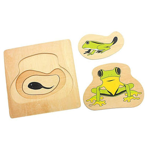 Life Cycle of the Frog 3D Puzzle - Montessori Toy Box