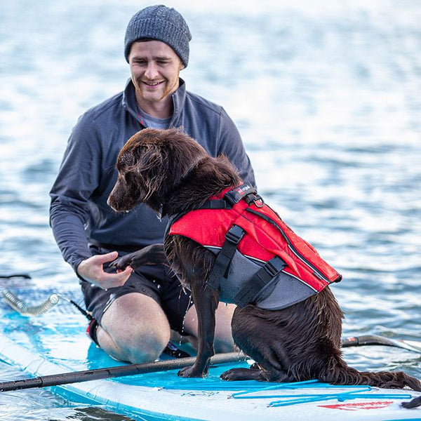 Dog Buoyancy Aid