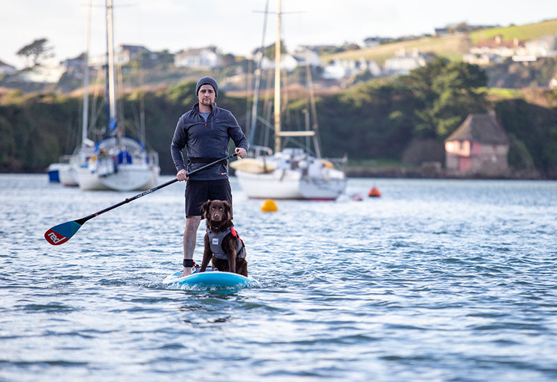 Dog on the front of an SUP wearing the Red Original Dog Buoyancy Aid
