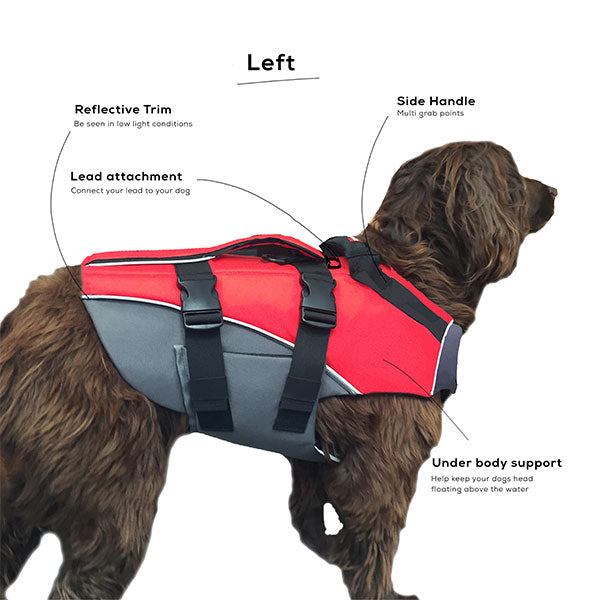 Dog Buoyancy Aid From The Left