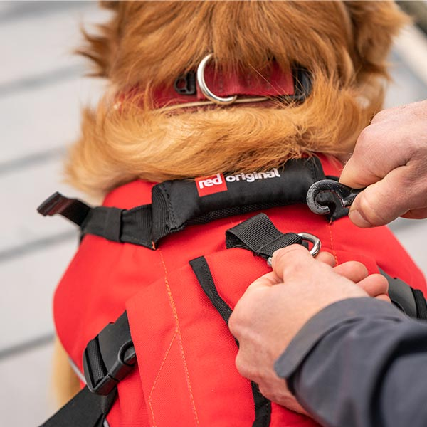 Lead being clipped on to a Red Original Dog Buoyancy Aid being worn by a dog