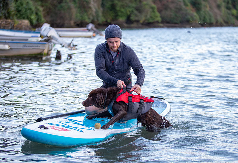 Man pulling a dog onto a paddle board wearing the Red Original Dog Buoyancy Aid