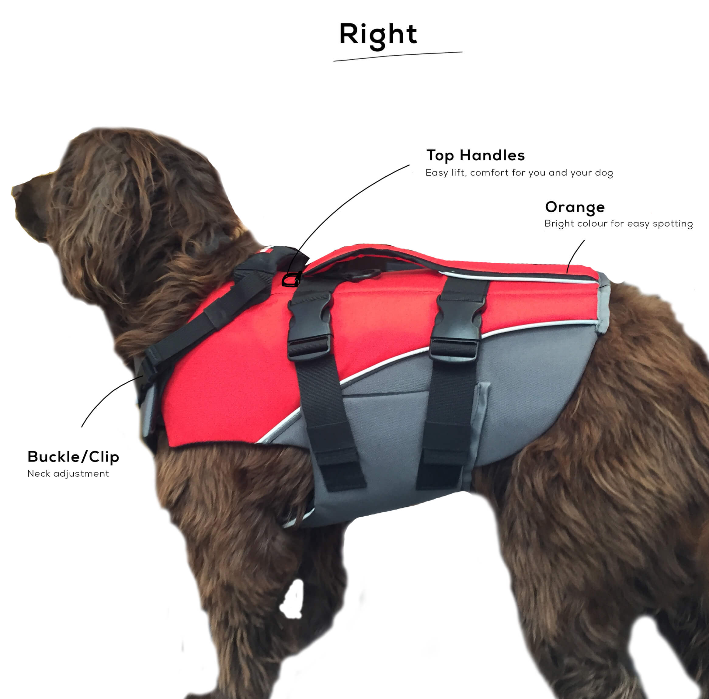 A Detailed Image Of The Red Original Dog Buoyancy Aid - Right