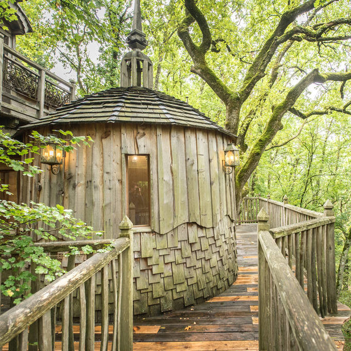 A Glamping Tree House