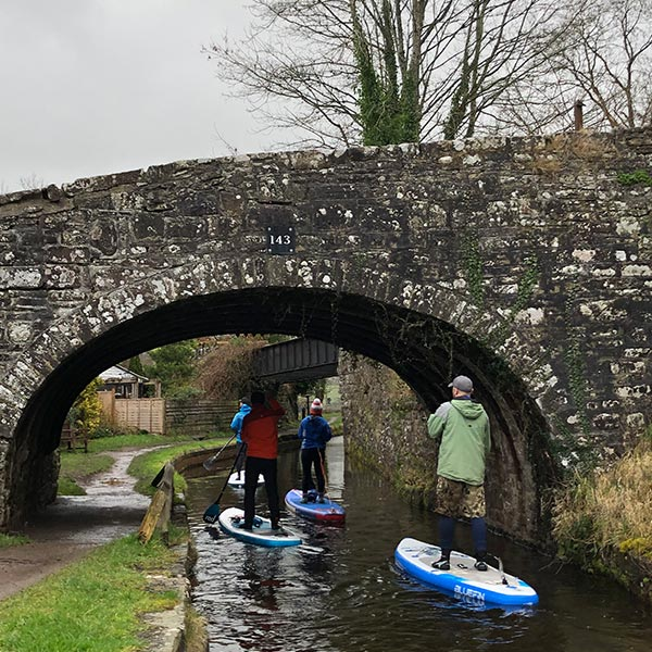 Group paddle boarding on canal