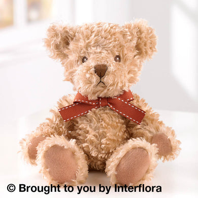LIght Brown Teddy Bear for same day Glasgow flower delivery