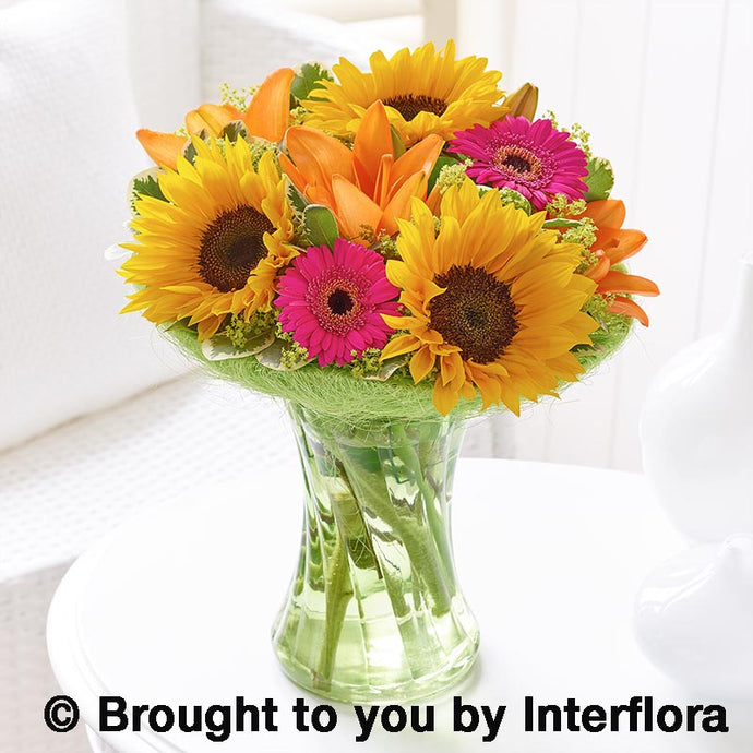 Sunflower Perfect Gift