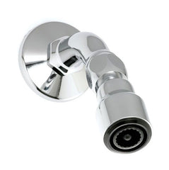 Cobra Typhoon Showerhead Swivel