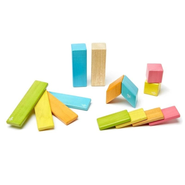 14 Piece Tegu Magnetic Wooden Block Set, Tints - toybox.ae