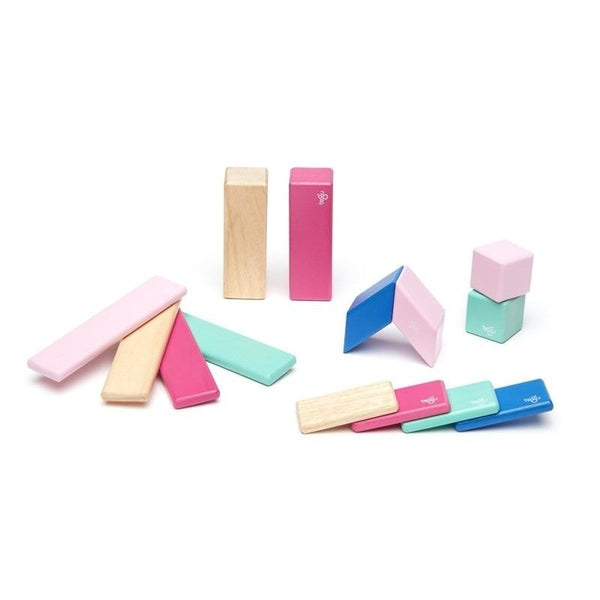 14 Piece Tegu Magnetic Wooden Block Set, Blossom - toybox.ae