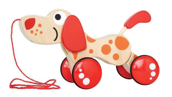 Hape Walk-A-Long Puppy/FSC
