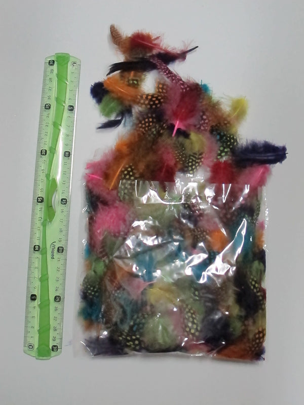 Feather Pack of +- 200pcs Coloured Dotted Mixed - toybox.ae