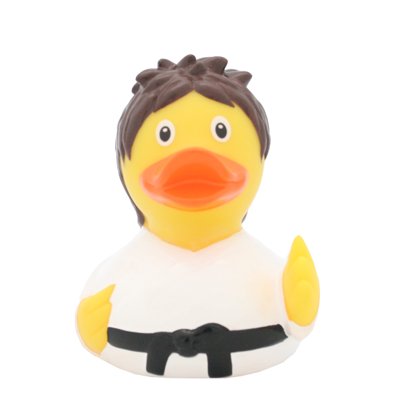 Kung Fu Duck - design by LILALU - toybox.ae
