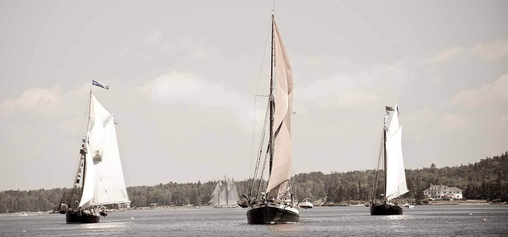 The Great Schooner Race I