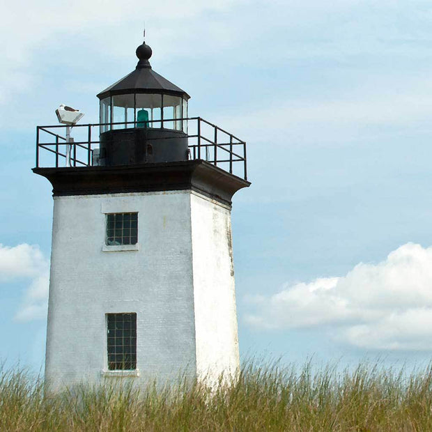 Long Point Light I