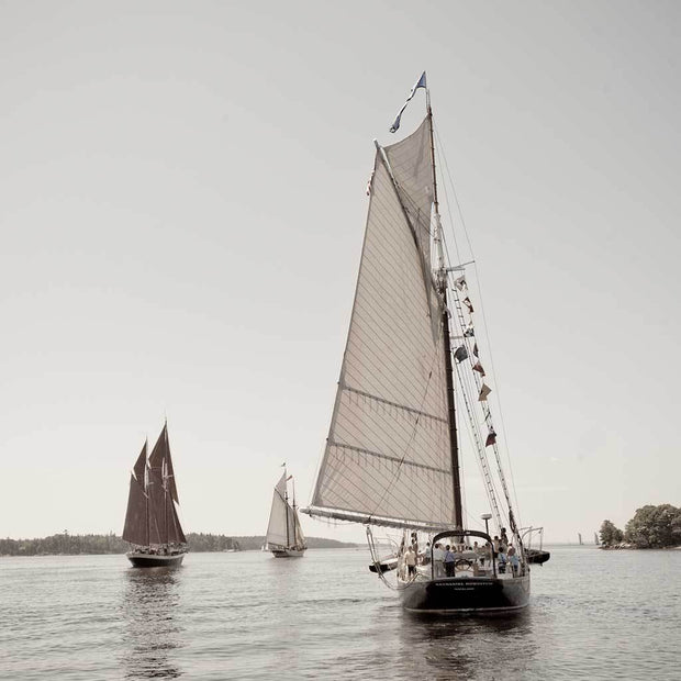 The Great Schooner Race II