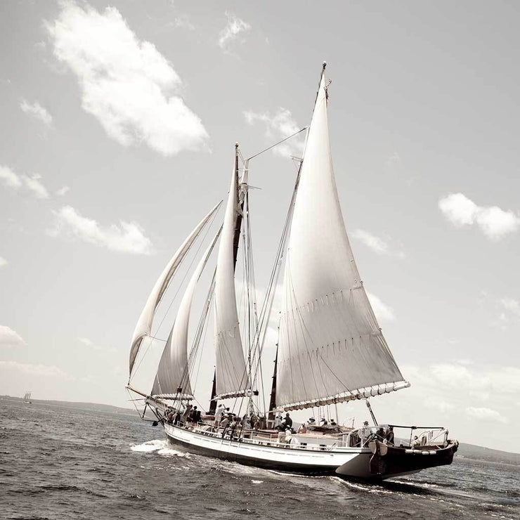 "The Great Schooner ""Grace Bailey"" I"
