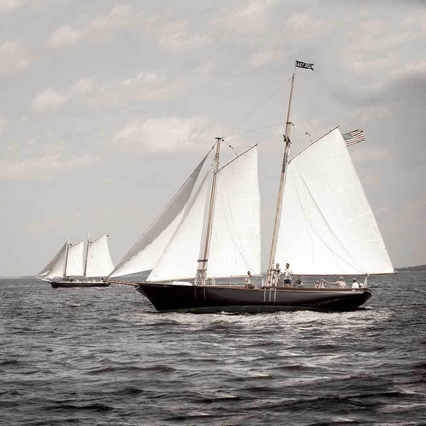 "The Great Schooner ""Lazy Jack"""
