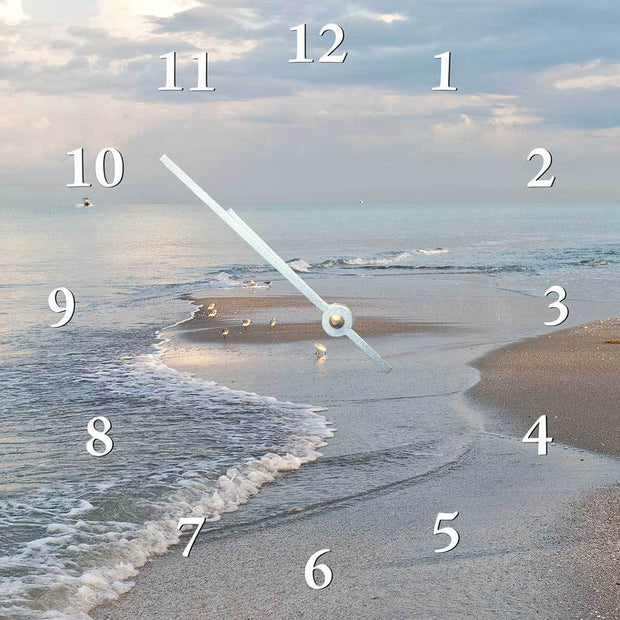 Beach Birdwalk Clock