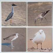 Shorebirds Coaster Set