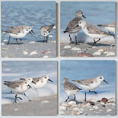 Sandpipers Coaster Set