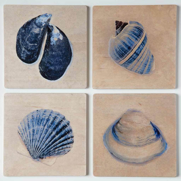 Blue Sea Shells Coaster Set