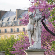Paris in Pink II
