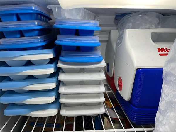 The top shelf in the basement freezer stocked full of pre-made nugget ice, as well as trays of ice kept ready-to-use 24/7 for ice dyeing anytime