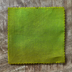 A True-to-Color Swatch, Taken Under Natural Sunlight on a 100% Color Sample Square of Dharma Trading Co. Discontinued Fiber Reactive Dye in Color Green Eggs