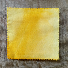 A True-to-Color Swatch, Taken Under Natural Sunlight on a 100% Color Sample Square of Dharma Trading Co. Limited Edition Fiber Reactive Dye in Color Vanilla Custard