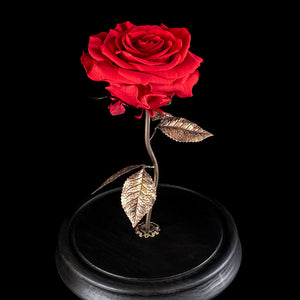 The Bella, Taxidermy rose with custom brass stem and ebonised wooden base oddities Decorus Macabre - Decorus Macabre