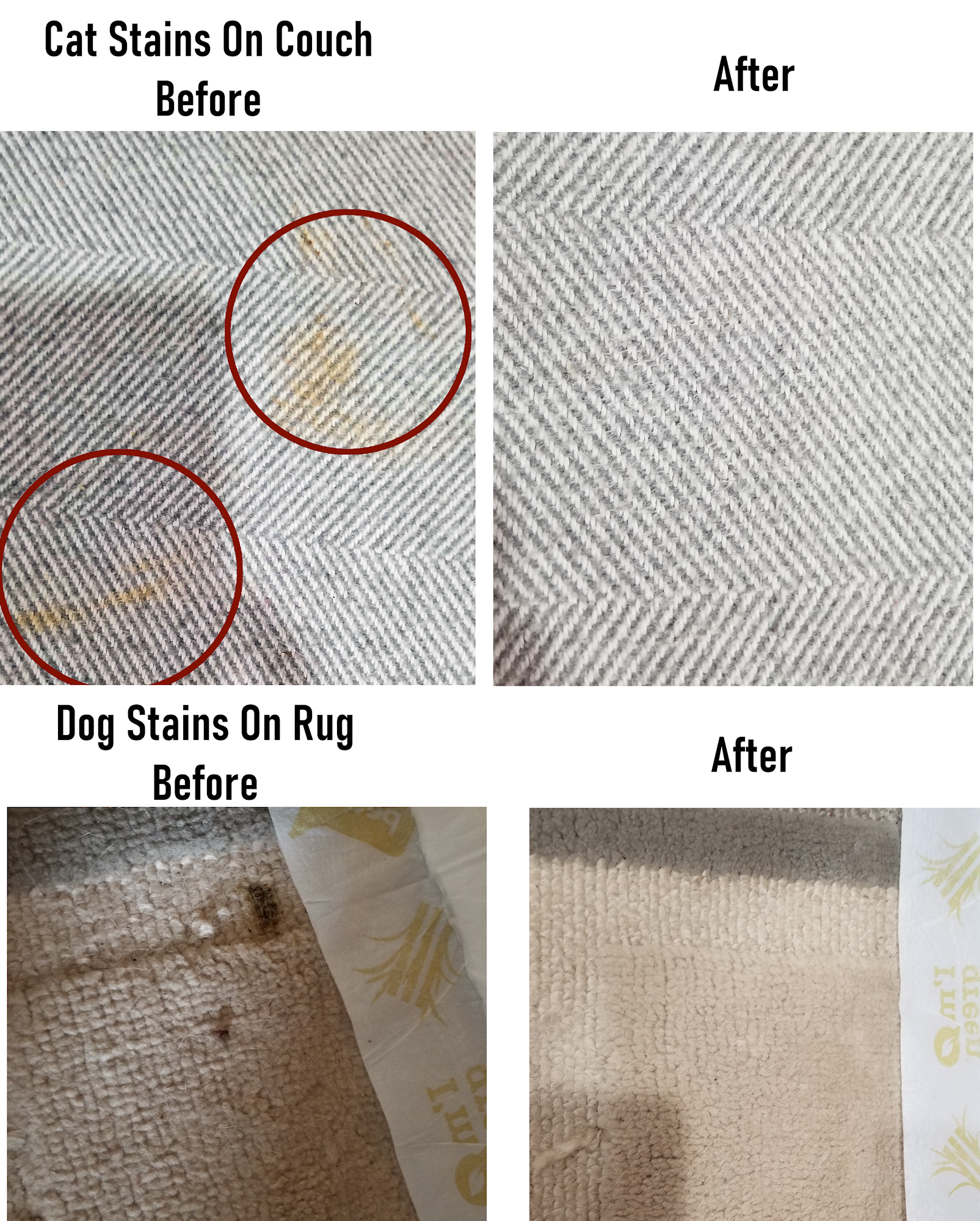 Cat stain cleaner spray