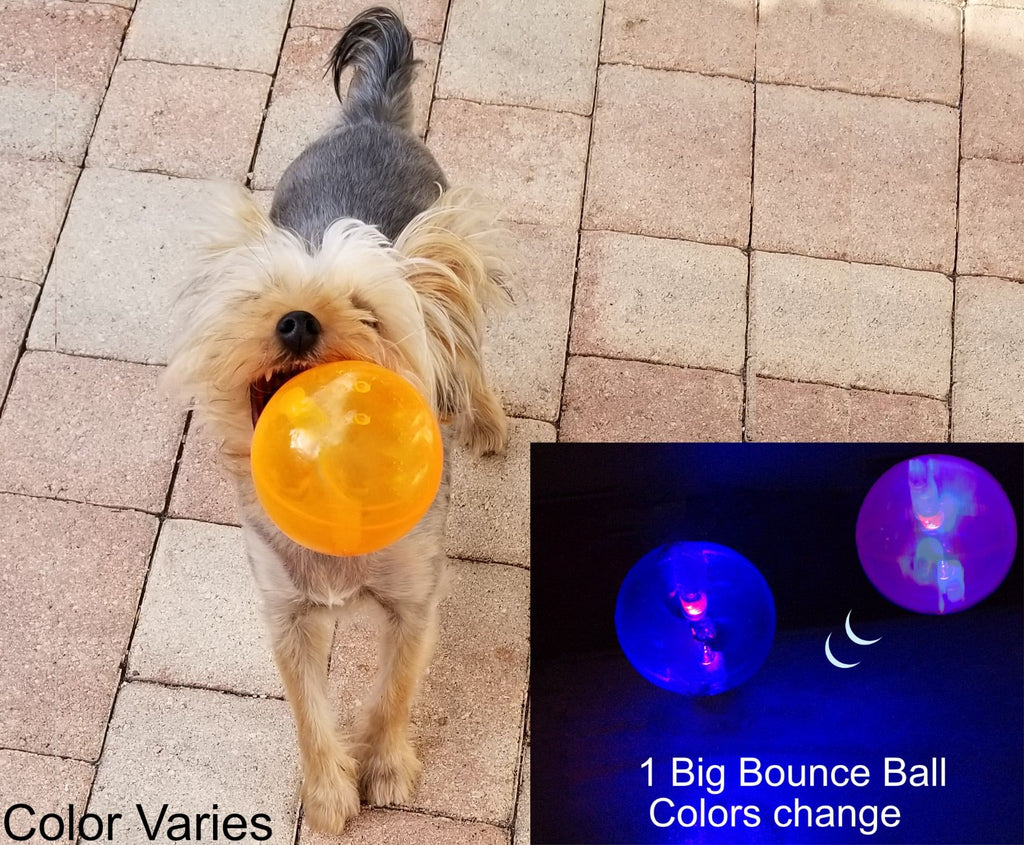 "NEW! 4"" Crazy Big Dog Ball Toy With Colorful Light And A Playful Bounce. Small to Medium Dogs Are Obsessed With This Fun Toy Ball floats"