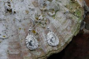Limpet Shell Silver Earrings FE 15