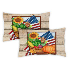 American Harvest 12 x 19 Inch Indoor Pillow Case (2-Pack)