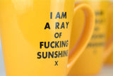 I am a Ray of Fucking Sunshine Mug