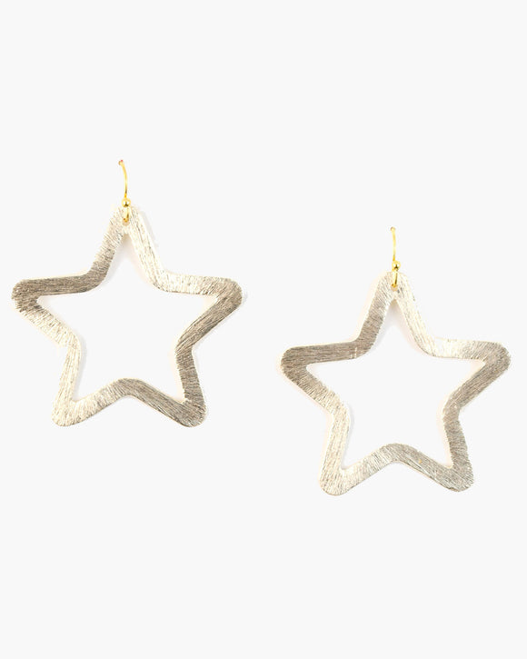Brushed Star Earring (ER407)
