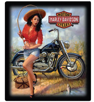 H-D® Nice Catch Babe Tin Sign