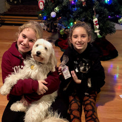 Ella and Taco loved their good paws Christmas stocking stuffer treats