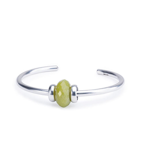 Great Lakes Boutique Serpentine Silver Bangle